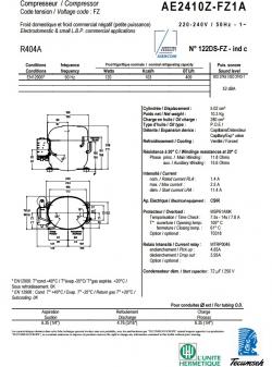 AE2410Z-FZ1A  (5.02см3)