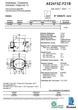 AE2415Z-FZ1B (7.33см3)