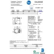 CAJ 2432 Z  (18.3см3)