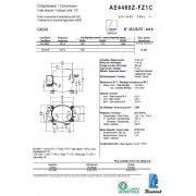 AE 4460 Z (10.33см3)