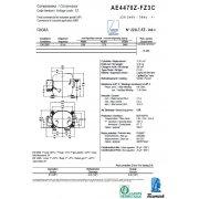 AE 4470 Z (12.01см3)
