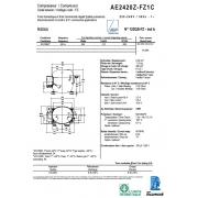 AE2420Z-FZ1C  (9.35см3)