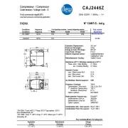CAJ 2446 Z (26.2см3)